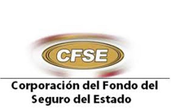 Módulo CFSE-373